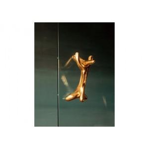 Art Design from Salvador Dalí - Rinoceróntico